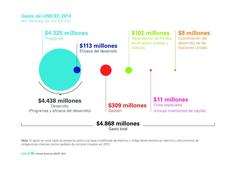UNICEF Annual Report 2014 Tables and Charts Spanish Editable Vector PDF