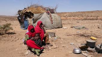 13198 Somalia Drought INT SOCIAL HD PAL
